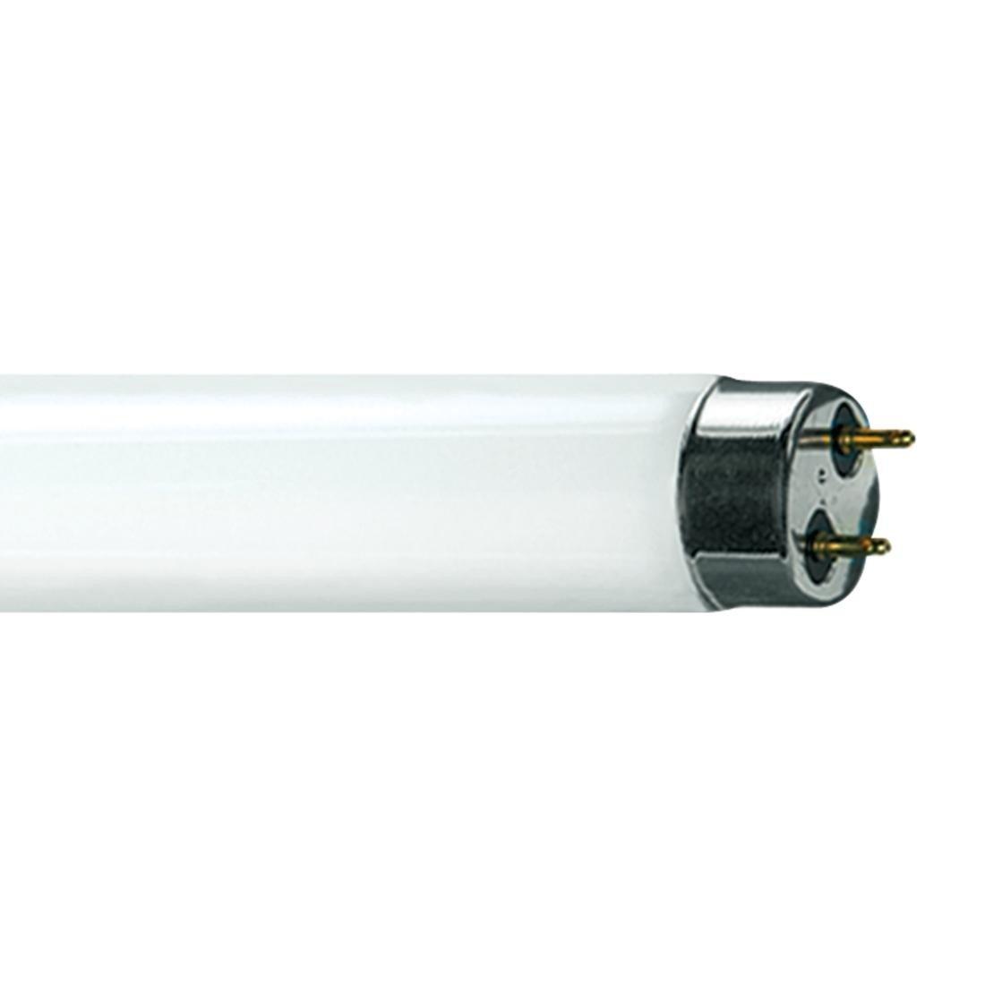 Medium Bi-Pin base length 48in 2400 lumens 6500K Sylvania #22440 FO32//V65//ECO 32 watt T8 Linear Fluorescent Lamp G13 22,500hr life