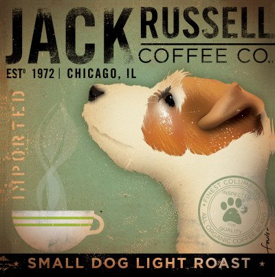 Jack Russell - 5