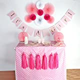 Baby Shower Decorations for Girl, It's A Girl, Banner...