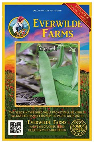 Romano Bean Seeds - 120 Roma II Green Bean Seeds - Gold Vault Jumbo