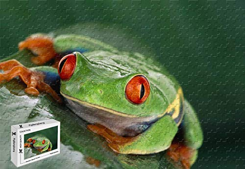 Orange Tree Frog - PigBangbang,29.5 X 19.6 Inch,Difficult Puzzle Premium Basswood - Tree Frog Costa Rica Green Orange Tropical Exotic Travel - 1000 Piece Jigsaw Puzzle