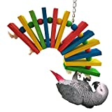 Bwogue Colorful Wooden Bird Toys For African Greys Parrots Cage Chewing Toy,Large
