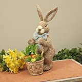 Sisal Easter Bunny with Basket and Raffia Carrots, 20 Inch x 12 Inch