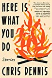Here Is What You Do: Stories