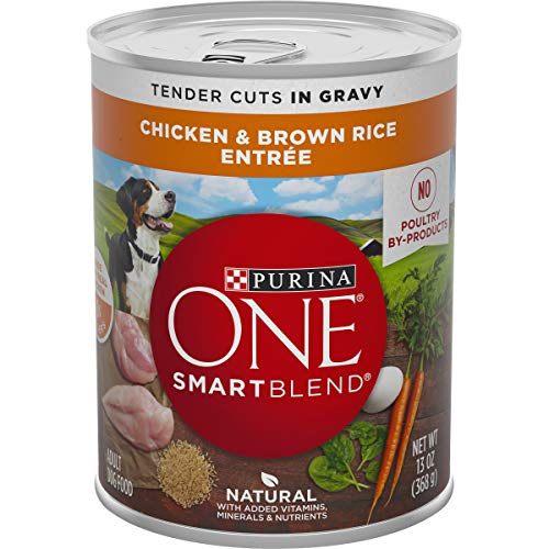 Purina ONE Natural, High Protein Gravy Wet Dog Food, SmartBlend Tender Cuts Chicken & Brown Rice - (12) 13 oz. Cans