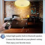Ceiling Lamp with Bluetooth Speaker Smart APP