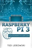 Raspberry Pi 3: 2016 Raspberry Pi 3 User Guide (Raspberry Pi, Raspberry Pi 2, Raspberry Pi Programming, Raspberry Pi Projects)