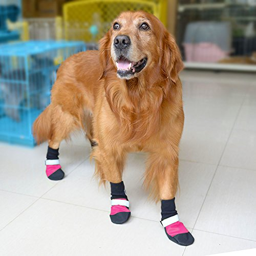 Doglemi Dog Waterproof Non-slip Shoes Comfortable Boots Fashion Durable Reflective Stripe Dog's Paws Protector Shoes for Medium to Large Dogs 5 Sizes XS Rose Red (Tip Split Rear)