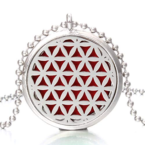 DOZOGU Aroma Diffuser Necklace Magnetic Stainless Steel Aromatherapy Essential Oil Perfume Locket Women Pendant Jewelry Choker Gift ()