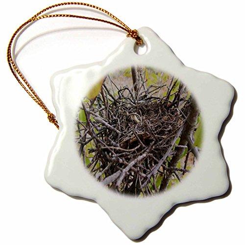 - 3dRose orn_36698_1 Empty Bird Nest Snowflake Decorative Hanging Ornament, Porcelain, 3-Inch