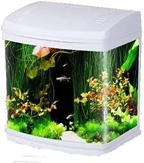 Fish & Aquariums Symbol Of The Brand Aquarium Floating Magnetic Brush Fish Tank £7.99 24hr Dispatch From U.k.