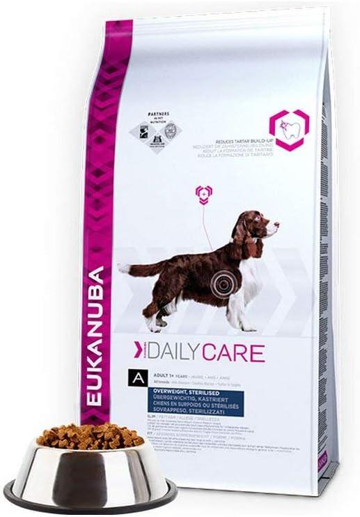 Eukanuba Daily Care Overweight/Sterilized para perros con sobrepeso y esterilizados