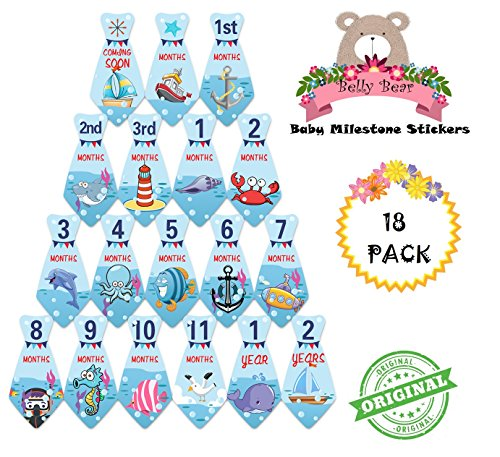 Belly Bear Original Sea Life Cartoon Series Milestones and Holidays Baby Monthly Stickers Shower Gift or Scrapbook Photo Keepsake Deluxe Set B002