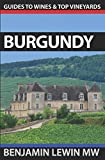 img - for Burgundy (Guides to Wines and Top Vineyards) book / textbook / text book