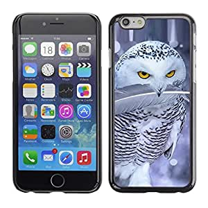Be Good Phone Accessory // Dura Cáscara cubierta Protectora Caso Carcasa Funda de Protección para Apple Iphone 6 // Cute Owl Snow Winter Ferocious Feather