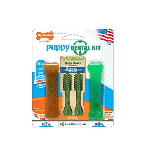 Nylabone Dental Kit for Small Puppies ()