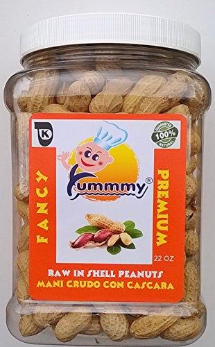 Yummmy Kosher Raw Peanuts in Shell, 22 Oz.