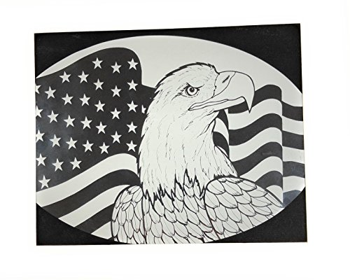 DCentral American Flag and Eagle Removable Window Decal., used for sale  Delivered anywhere in USA