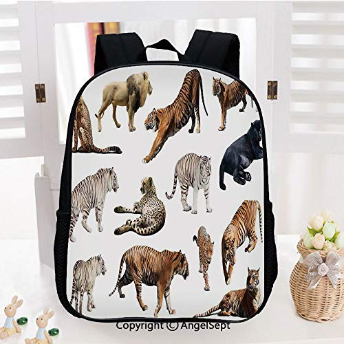(Kids School Backpack,Collection of Tigersand other Big Wild Cats Predatory Feline Zoo Lying Standing Background Nursery Room Decorations Classic,Plain Bookbag Travel Daypack,)