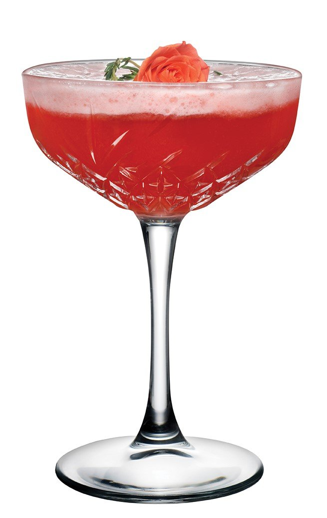 Hospitality Glass Brands 440236-012 Timeless Coupe, 9 oz. (Pack of 12) by Hospitality Brands (Image #4)