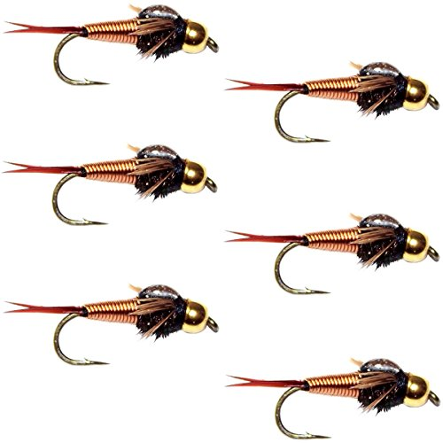 Nymphs Fly Set (The Fly Fishing Place Bead Head Copper John Nymph Fly Fishing Flies - Set of 6 Flies Hook Size 16)