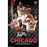 Chicago Bulls - Collage 14 Poster 22 x 34in