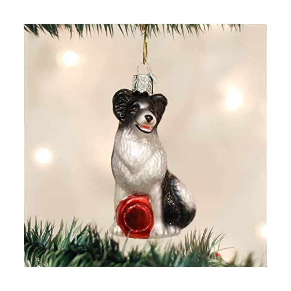 Old World Christmas Ornaments: Border Collie Glass Blown Ornaments for Christmas Tree (12302) 2