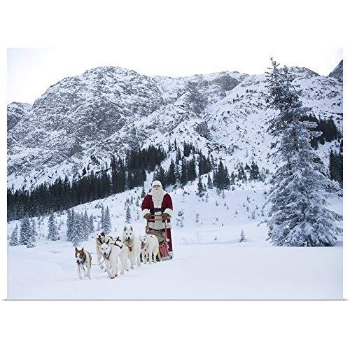 GREATBIGCANVAS Poster Print Entitled A Team of Husky Dogs Pulling Santa Claus and his Sleigh by 40