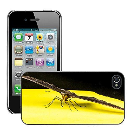 Bild Hart Handy Schwarz Schutz Case Cover Schale Etui // M00135104 Schmetterlings Insekten // Apple iPhone 4 4S 4G