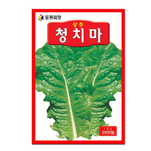 EmcoDea Lettuce Seeds Plant. Easily Grow Plants with Excellent Varieties Korea Seed (2000ea/1Pack)