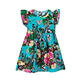 Clearance Sale!OverDose Toddler Kids Baby Girls Floral Sleeveless Princess Formal Party Dress(3T, Blue)