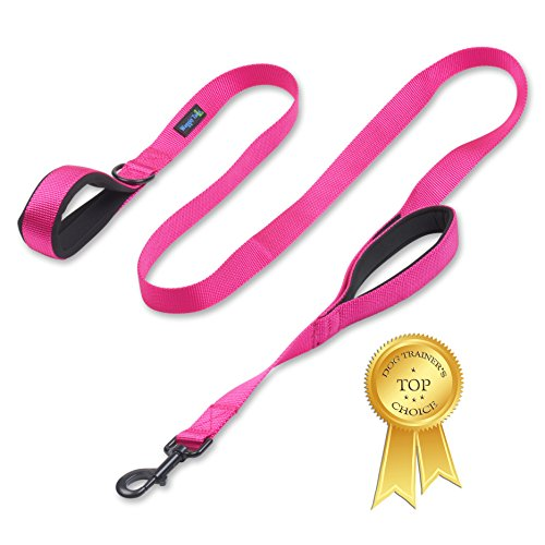 Waggin Tails Soft &Thick Dual Handle 6FT Dog Leash, Premium Strength Double Padded Handles - Great Control for Medium, Large or XLarge Dog - Vibrant Colors (Lively Pink)