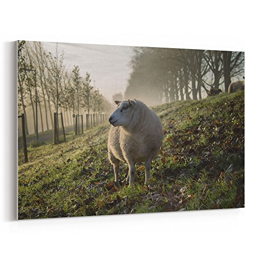 Westlake Art - Sheep Animal - 24x36 Canvas Print Wall Art -