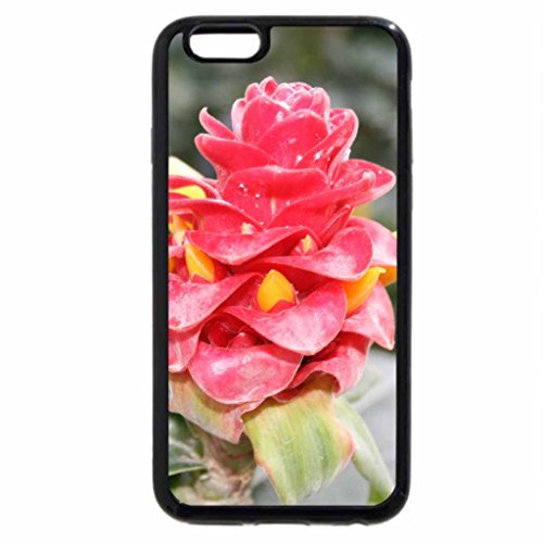 iPhone 6S / iPhone 6 Case (Black) photos day at Edmonton garden 18