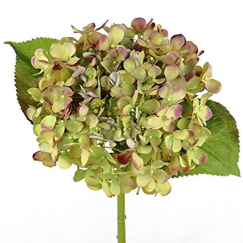 Rinlong Artificial Silk Hydrangea Flowers Stem Green for Flowers Arrangement Home Party Wedding Decor(Purple Green) (Flowers Silk Prima)