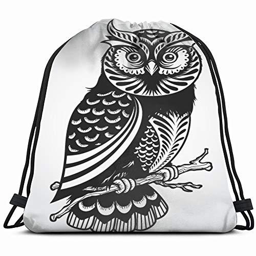 Decorative Owl Illustrations Clip Art Transportation Drawstring Backpack