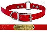 Outdoor Dog Supply's 3/4'' Wide Solid Ring in Center Dog Collar Strap with Custom Brass Name Plate … (Red)