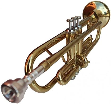 Trompeta con estuche y accesorios Alexander Gotye: Amazon.es: Instrumentos musicales