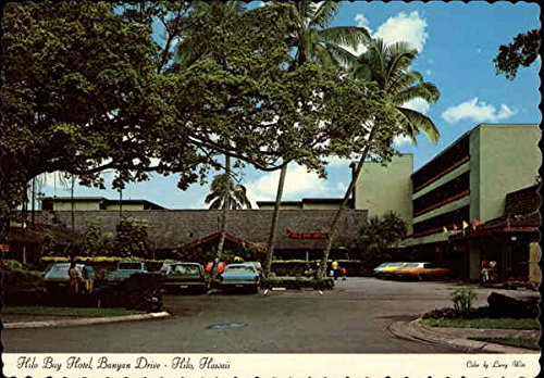 Hilo Bay Hotel, Banyan Drive Hilo, Hawaii Original Vintage Postcard (Bay Banyan)