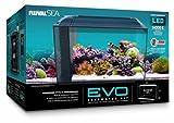 Fluval Evo Aquarium All In One Kit 13.5 Gallons