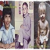 Sparkle & Fade (Vinyl)