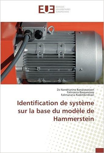 Book Identification de système sur la base du modèle de Hammerstein (French Edition)