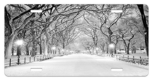 Winter License Plate by Lunarable, View of Central Park in Winter Snowy Trees and the Walkway Digital Art Print, High Gloss Aluminum Novelty Plate, 5.88 L X 11.88 W Inches, Black and White (Walkway Tree)