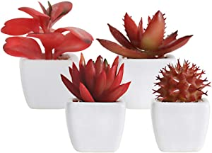 Artificial Plants Desk Fake Succulents Indoor Decor Office Room Decoration Small Tiny Realistic Plants in White Ceramic Potted Halloween Home Decor(Red-1)