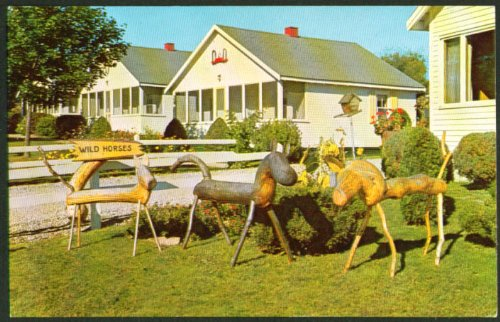 County Fair Motel animals Damariscotta ME postcard 1950s from The Jumping Frog