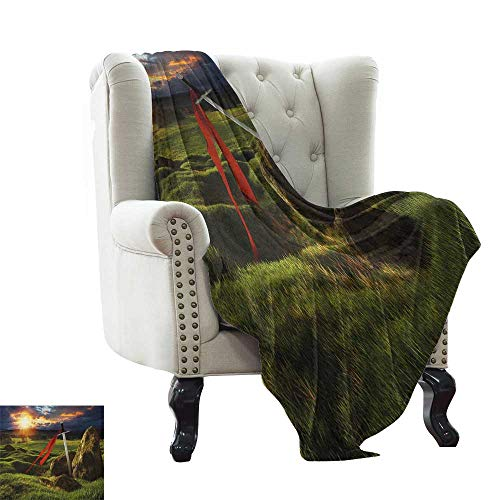 Puppy Blanket King,Arthur Camelot Legend Myth in England Ireland Fields Invincible Myth Image, Green Blue and Red Warm Blanket for Autumn Winter 50