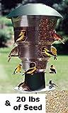 Wild Bills Electronic Bird Feeder & Waste Free Seed, 12 Port