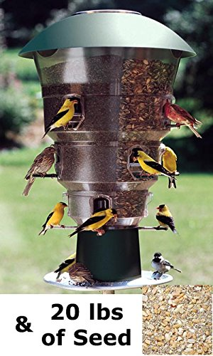 Wild Bills Electronic Bird Feeder & Waste Free Seed, 12 Port