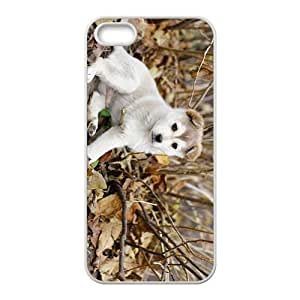 Cute Dog Hight Quality Plastic Case for Iphone 5s by icecream design