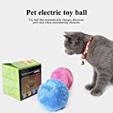Leegoal Funny Pet Electric Toy Ball Non-Toxic Plush Pet Electric Toy Ball Keep Your Dog Active and Healthy,5.25 inches